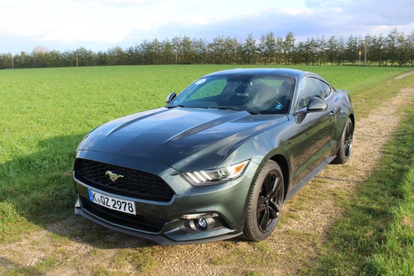 Mustang_01_vorne