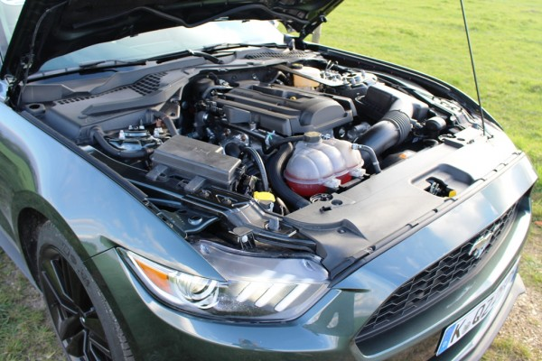 Mustang_12_motor